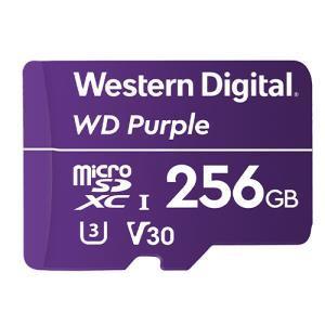 STORAGE MISC 256GB microSDXC